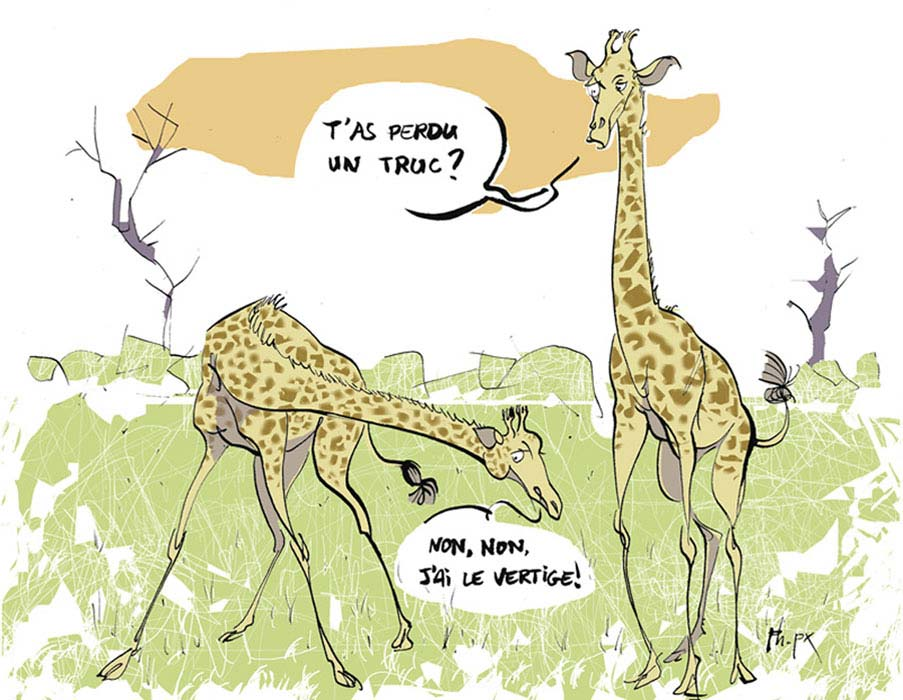 Philippe Peseux - Girafes