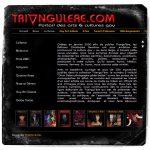 Site web Triangul'ère