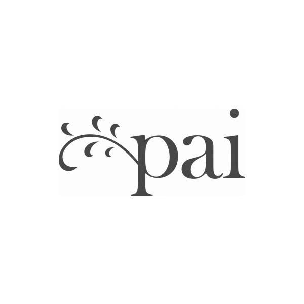 Logo en minuscule - pai