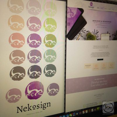 Sneek peek Nekosign v4