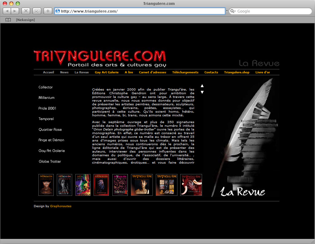 Interface Triangul'ere website revue