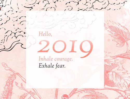 { Hello } 2019 • Résolutions et bilan 2018